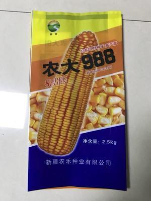 辽宁省沈阳市新民市玉米种子 ≥99% ≥96% ≥99.9% 常规种 ≤13%