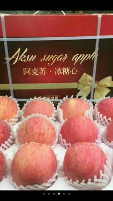 这是一张关于阿克苏冰糖心苹果 纸+膜袋 全红 85mm以上的产品图片