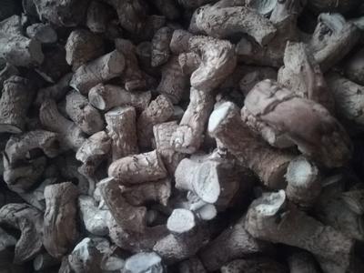 河南省南阳市西峡县香菇腿干 散装 1年