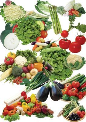 这是一张关于冬绿甘蓝 2.5~3.0斤的产品图片