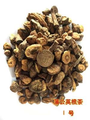 吉林省白山市抚松县蒲公英茶 袋装 特级