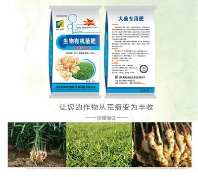这是一张关于大姜用生物有机肥的产品图片