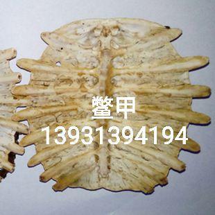 这是一张关于鳖甲的产品图片