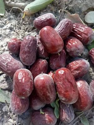 新疆维吾尔自治区阿克苏地区阿瓦提县若羌灰枣 特级