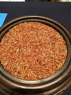 湖南省郴州市永兴县有机红米