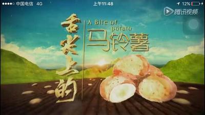 陕西省榆林市榆阳区土豆粉