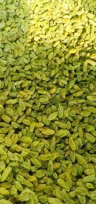 新疆维吾尔自治区吐鲁番地区鄯善县新疆绿葡萄干 优等