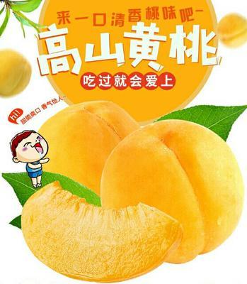 重庆万州区锦绣黄桃 45mm以下 3 - 4两