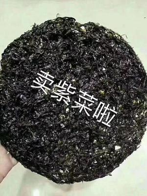 福建省福州市闽侯县头水紫菜