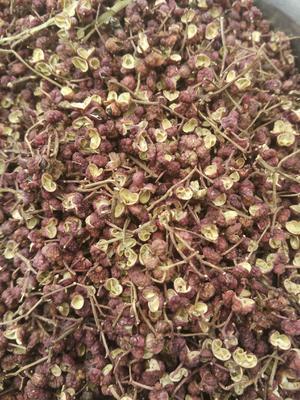 这是一张关于大红袍花椒 干花椒 一级的产品图片