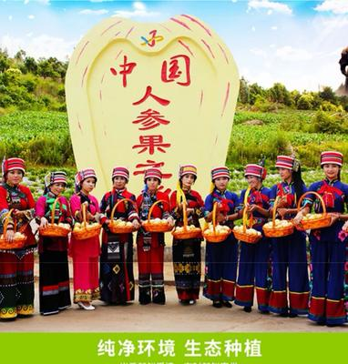 云南省昆明市石林彝族自治县圆果 2 - 3两以上
