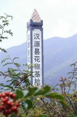 四川省雅安市汉源县汉源花椒 干花椒 特级
