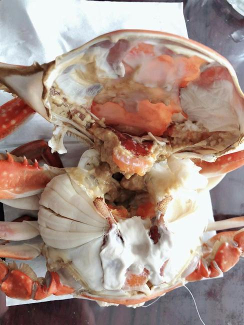 梭子蟹 7.0两 母蟹