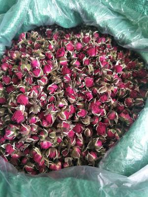 这是一张关于金边玫瑰的产品图片