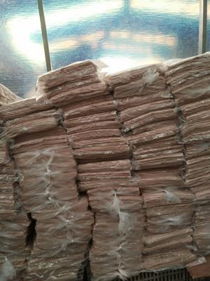 山东省临沂市兰山区煎饼 3-6个月