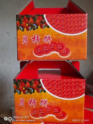 广西壮族自治区桂林市平乐县平乐柿饼 礼盒装