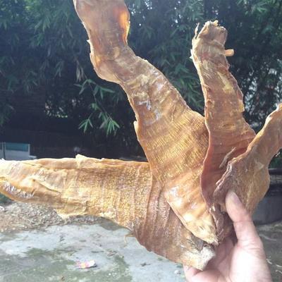 广西壮族自治区贺州市八步区甜笋干 袋装 1年以上
