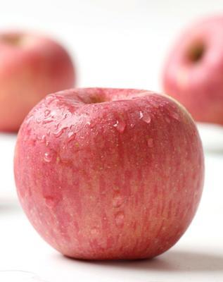 这是一张关于红富士苹果 纸袋 全红 75mm以上 的产品图片