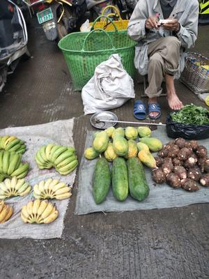 广西壮族自治区河池市都安瑶族自治县青木瓜 2.5 - 3斤
