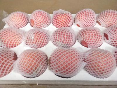 山西省运城市万荣县红富士苹果 纸+膜袋 条红 75mm以下