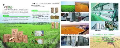 这是一张关于盘锦大米 一季稻 梗米 一等品的产品图片