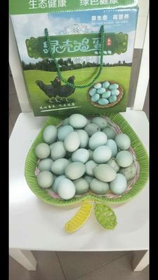 云南省昆明市东川区绿壳鸡蛋 食用 箱装