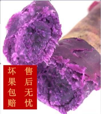 重庆黔江区渝紫7号 6两~1斤