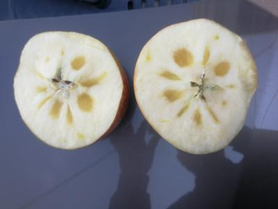 新疆维吾尔自治区乌鲁木齐市东山区阿克苏冰糖心苹果 光果 表光 80mm以上