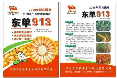 河南省郑州市惠济区玉米种子 ≥97% ≥96% ≥99.9% 常规种 ≤13%