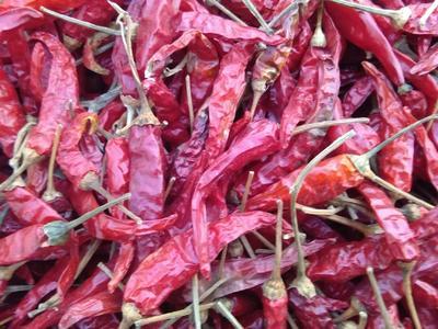 这是一张关于六寸红辣椒 5~10cm 红色 中辣的产品图片