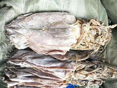 广西壮族自治区防城港市东兴市鱼干类