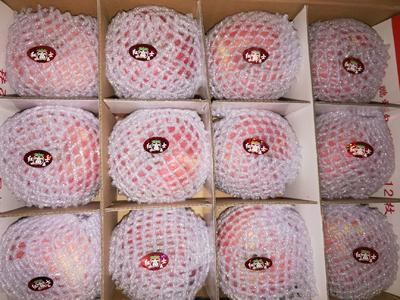 陕西省延安市黄陵县红富士苹果 纸袋 统货 80mm以上