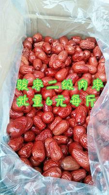 这是一张关于和田大枣  二级 优质肉枣的产品图片