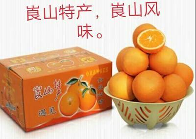 这是一张关于新宁脐橙 55 - 60mm 4两以下的产品图片