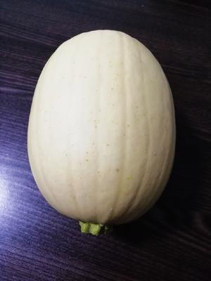 安徽省宿州市泗县中蔓 4-5斤