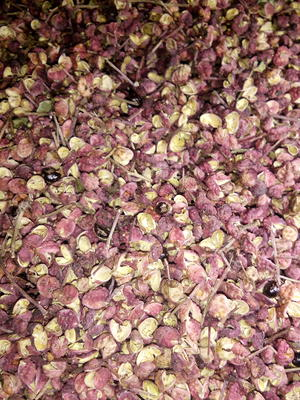 这是一张关于天水五龙花椒 干花椒 一级的产品图片