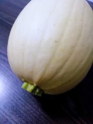 这是一张关于矮生短蔓 4-5斤的产品图片