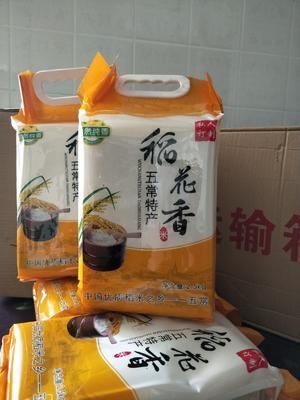 这是一张关于五常大米 晚稻 梗米 一等品的产品图片
