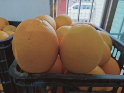 这是一张关于赣南脐橙 100mm以上 8两以上的产品图片