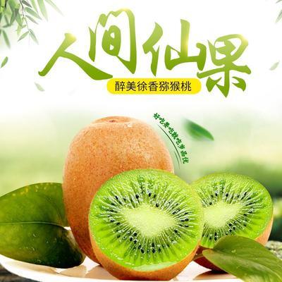 陕西省宝鸡市眉县眉县猕猴桃 60~100克
