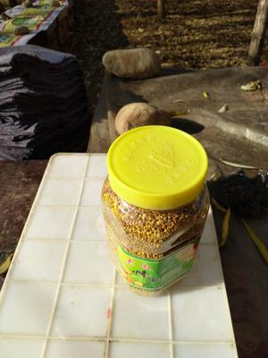 河南省安阳市林州市混合蜂花粉 6-12个月