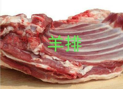 山东省济宁市嘉祥县羊肉类 生肉