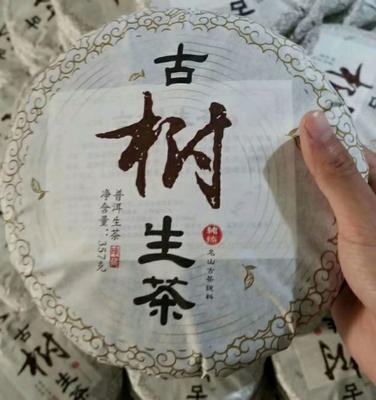 云南省昆明市官渡区大叶古树普洱茶 散装 特级