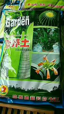 广东省湛江市霞山区花土