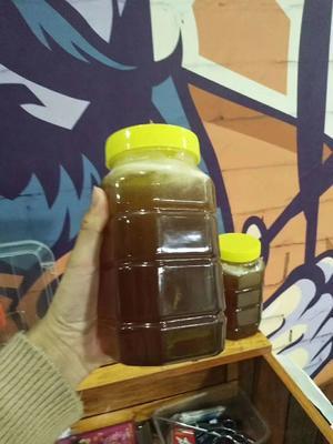 这是一张关于土蜂蜜 桶装 100% 2年以上的产品图片