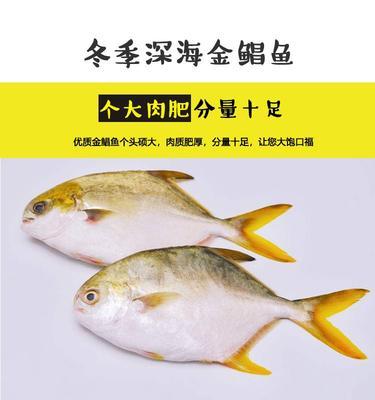 广西壮族自治区钦州市钦南区金鲳鱼 人工养殖 1-1.5公斤