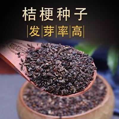 这是一张关于桔梗种子的产品图片