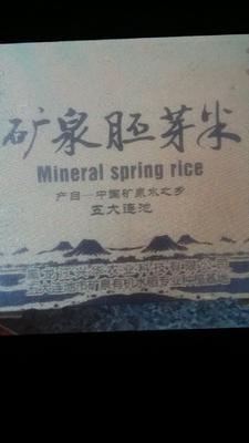 这是一张关于东北大米 一季稻 梗米 一等品的产品图片
