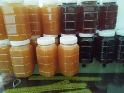 河南省洛阳市嵩县土蜂蜜 塑料瓶装 98% 2年以上