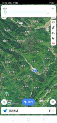 湖北省恩施土家族苗族自治州来凤县土猪 200-300斤